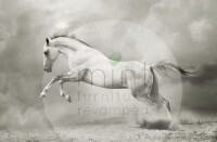 Mint by Michelle White Horse A1
